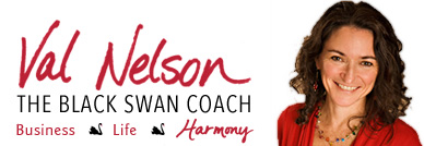 Val Nelson Business/ Life Coach for Introverted Women