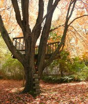 This treehouse gives me a soothing reminder of the joy of taking a break.