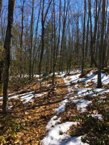 snow melting in spring