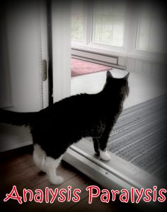 [Image: The classic cat in the doorway indecision = Analysis Paralysis.]