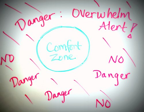 Comfort zone vs overwhelm zone image