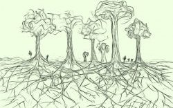 Like trees in a forest, we are stronger and more resilient when you're in it together.