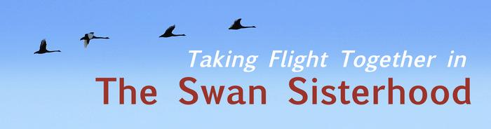 Taking Flight Together in the Swan Sisterhood