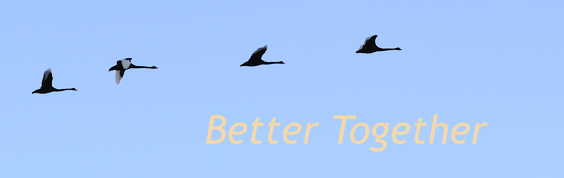 Better Together - groups for introverts
