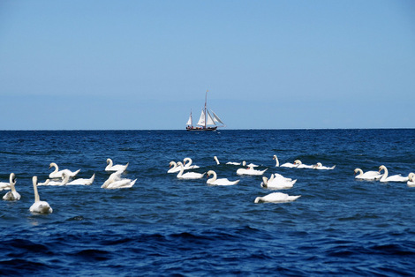The self-employment leap of faith is like learning to sail.
